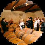air-wine-tour-offre-carte-apprendre